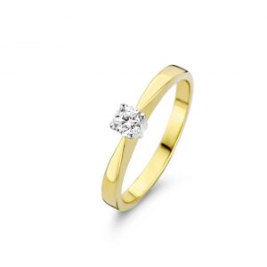 Mori Diamond 41-724-1020_bicolor